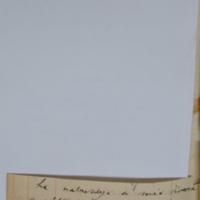 16574v.jpg